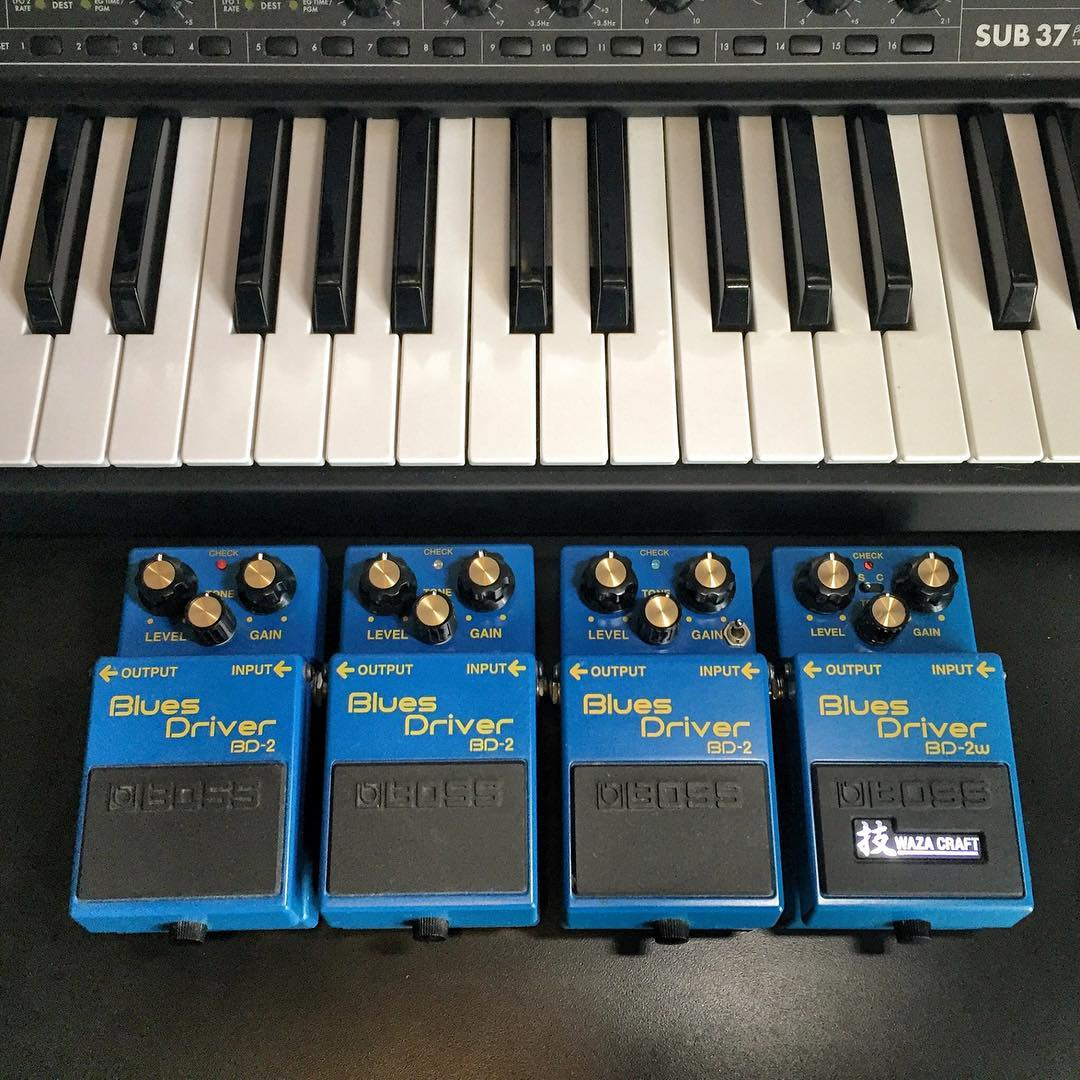 I got a bad case of the blues @bossfx_us @moogmusic