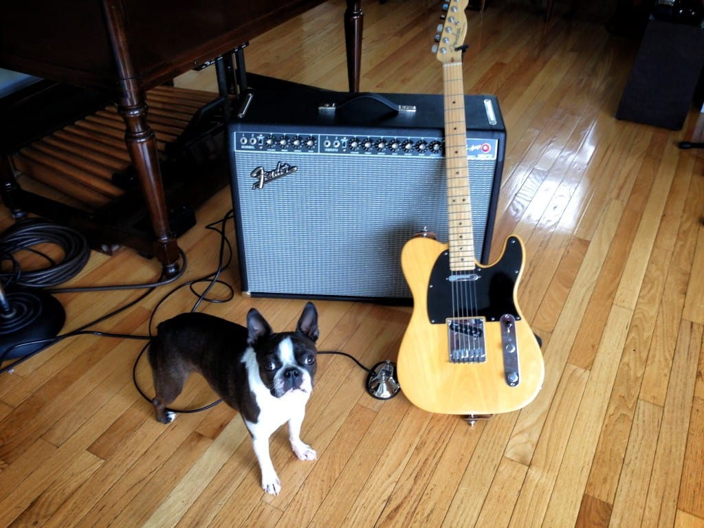 Fender Tele and '65 Twin Reverb