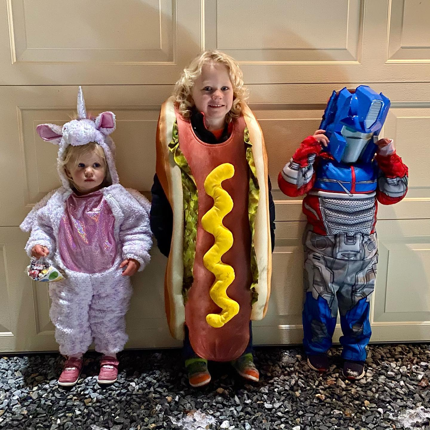Violet, Desmond, and their sole quarantine buddy, Nolan. We had a safe and lovely Halloween while celebrating Katie's 40th birthday.