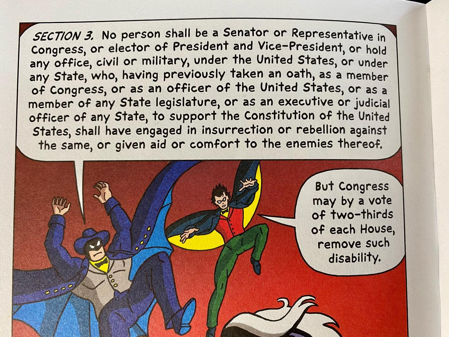 Section 3 of the 14th Amendment disqualifies those who engage in insurrection against the Constitution of the United States from holding office.From Constitution Illustrated by R. Sikoryak.